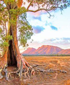 flinders ranges south australia painting by numbers