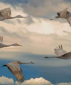 Flying Flocks paint by number