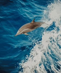 Swimming Dolphin paint by numbers
