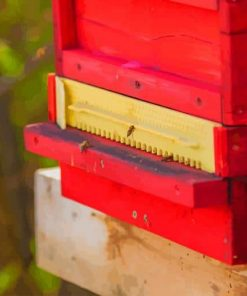 Bees In A Red Box paint by numbers