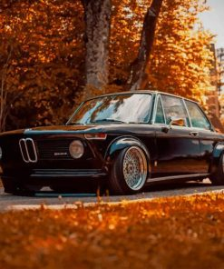 Black Classic BMW paint by numbers