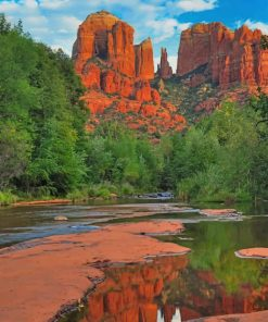Coconino National Forest Arizona paint by number