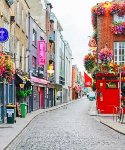 Dublin city painting by numbers