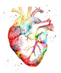 human heart art paint by numbers
