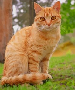 Orange Tabby Cat Sitting paint by numbers