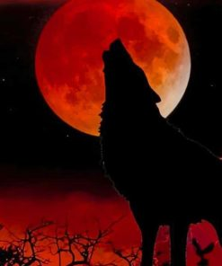 Silhouette of Wolf and Moon paint by numbers