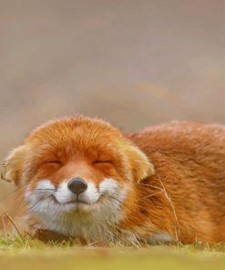 Happy Orange Fox painting by numbers