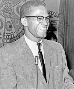 Malcolm X Smiling paint by numbers