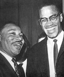 Martin Luther And Malcolm X paint by numbers