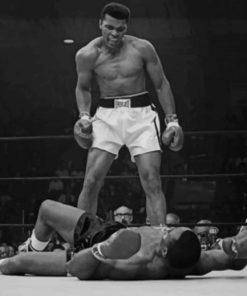 Mohammad Ali Black And White paint by numbers