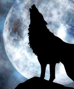 Lone Wolf Howling To The Moon painting by numbers