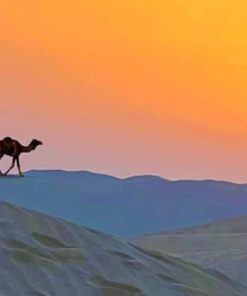 Desert Camel Silhouette paint by numbers