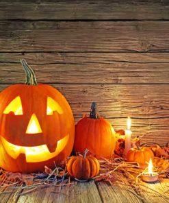 Halloween Pumpkin Celebration paint by numbers