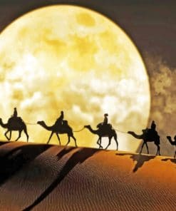 Moon Camel Desert paint by numbers