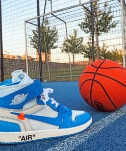 Nike Sneaker And Basket ball paint By Numbers