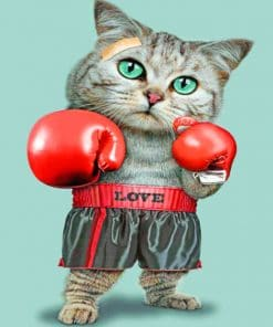 Boxing Cat paint by numbers
