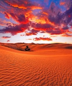 Golden Desert paint By Numbers
