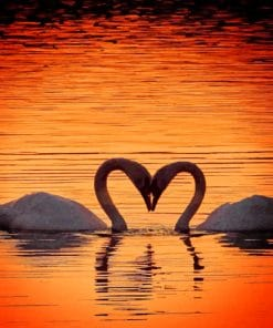 Swans Heart Silhouette paint by numbers