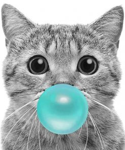 Cat With Bubble Gum paint By Numbers