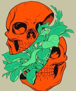 Indie Skull paint By Numbers
