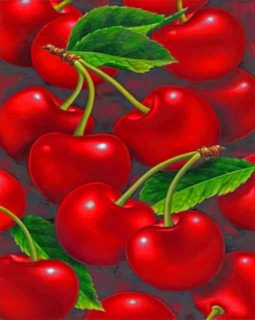 Red Cherry paint By Numbers