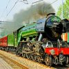 flying-scotsman-paint-by-numbers