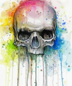 Colorful Skull Art paint by numbers