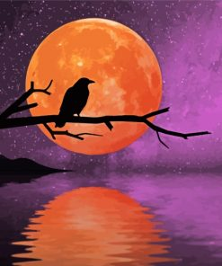Raven Moonlight paint by numbers