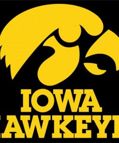 Iowa Hawkeyes paint by numbers